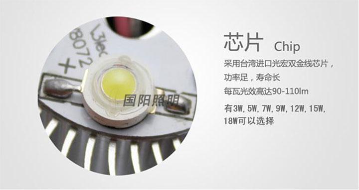 led灯泡-12wok